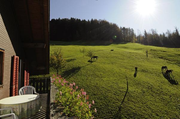 Ferienwohnung Schwarzenbachhof (862397), Steinen (Zentralschweiz), Schwyz, Zentralschweiz, Schweiz, Bild 14