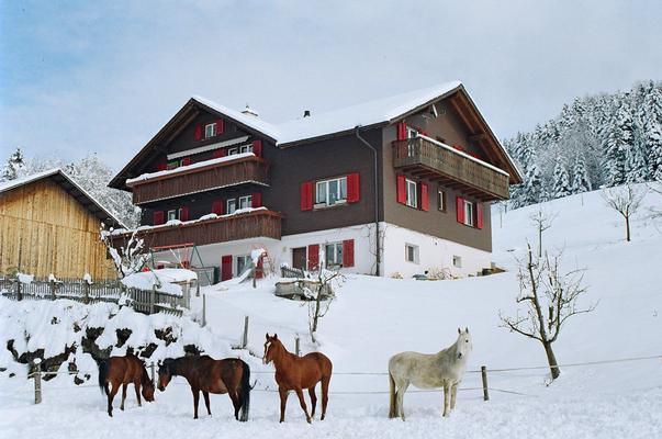 Ferienwohnung Schwarzenbachhof (862397), Steinen (Zentralschweiz), Schwyz, Zentralschweiz, Schweiz, Bild 17