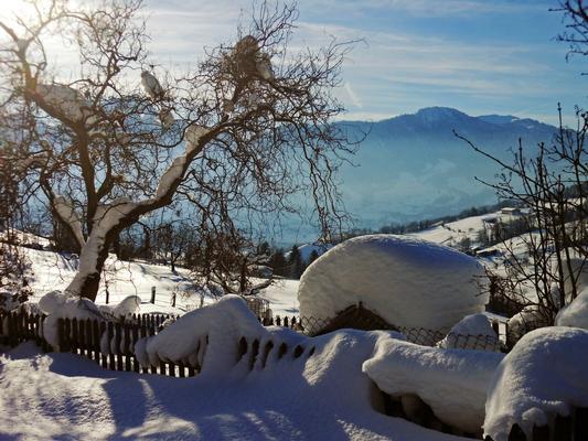 Ferienwohnung Schwarzenbachhof (862397), Steinen (Zentralschweiz), Schwyz, Zentralschweiz, Schweiz, Bild 18