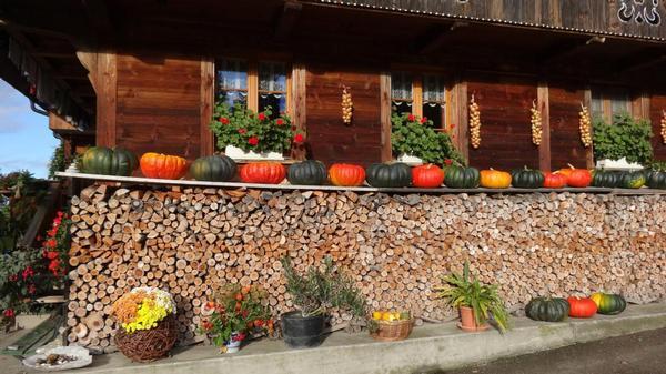 Bauernhof Röthlisberger, Emmental