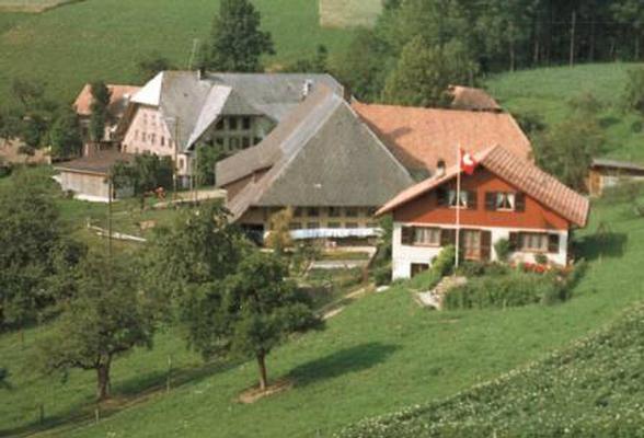 Ferienwohnung Sommerhof (862462), Rohrbachgraben, Aargau, Zürich, Schweiz, Bild 3