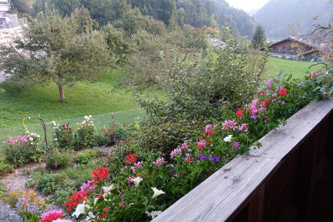 Ferienwohnung Chrütz Hof (862479), Oey, Diemtigtal, Berner Oberland, Schweiz, Bild 8
