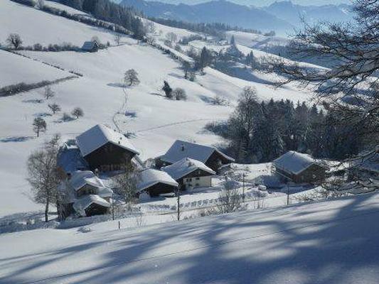 Ferienwohnung Ferienwohnung, Ferienhof Wald (862481), Wald ZH, Zürcher Oberland, Zürich, Schweiz, Bild 23