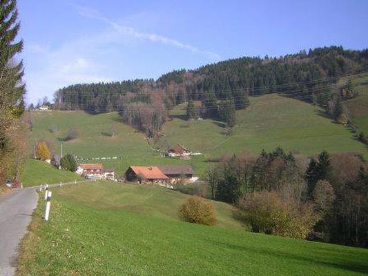 Ferienwohnung Ferienwohnung, Ferienhof Wald (862481), Wald ZH, Zürcher Oberland, Zürich, Schweiz, Bild 25