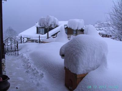 Holiday apartment EFH (870262), Emmetten, Nidwalden, Central Switzerland, Switzerland, picture 11