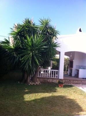 Ferienhaus Wunderschönes Ferienhaus, 800m vom Meer entfernt (877348), L'Ametlla de Mar, Costa Dorada, Katalonien, Spanien, Bild 4