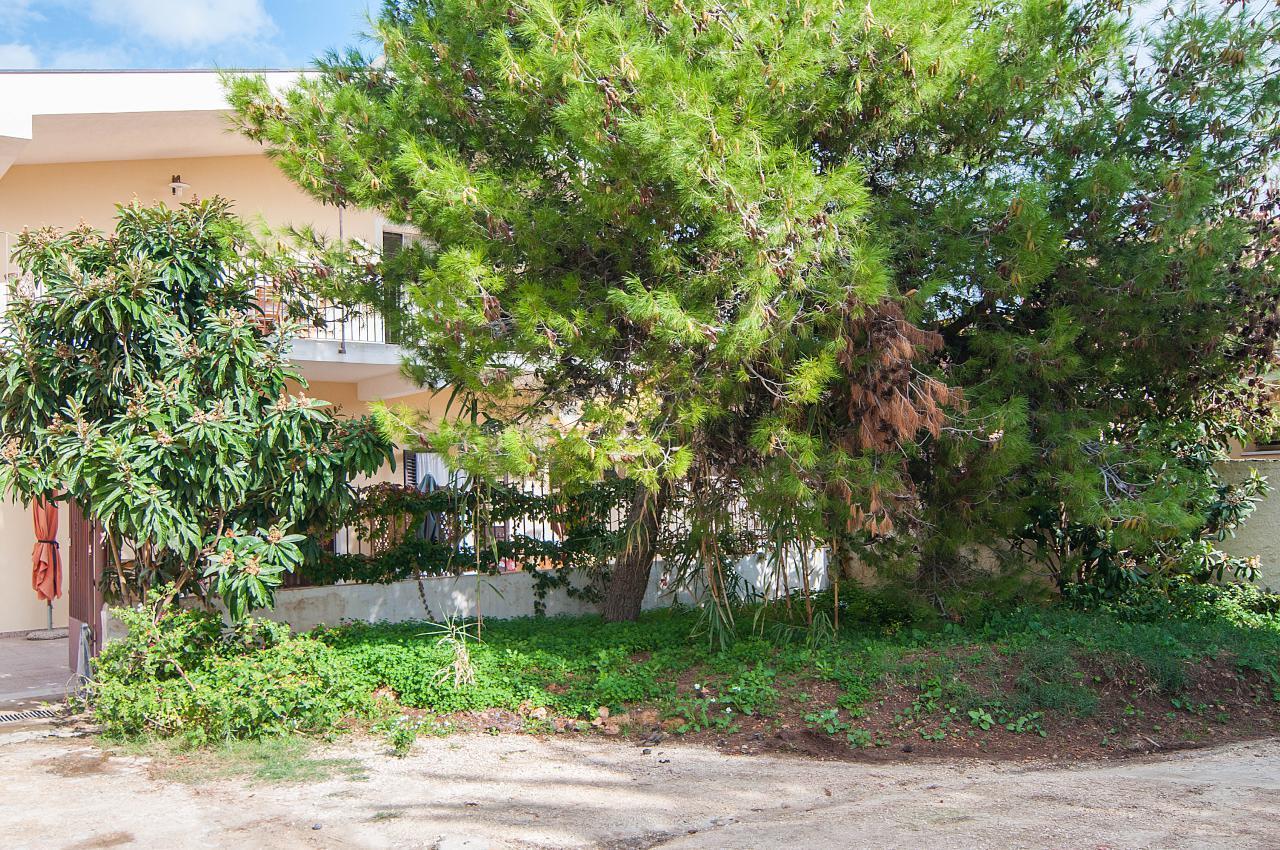 Appartement de vacances CASA NESPOLO (882137), Avola, Siracusa, Sicile, Italie, image 46
