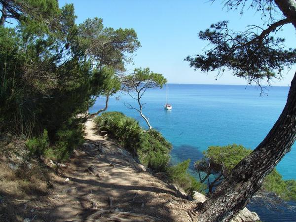 Ferienwohnung Casa Canyamel 29 (89912), Canyamel, Mallorca, Balearische Inseln, Spanien, Bild 21
