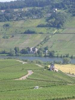 Ferienhaus **** (93072), Trittenheim, Mosel-Saar, Rheinland-Pfalz, Deutschland, Bild 16