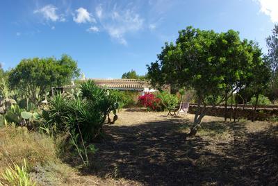 Maison de vacances Schöne alte Finca mit großem Garten (933964), San Fernando, Formentera, Iles Baléares, Espagne, image 15