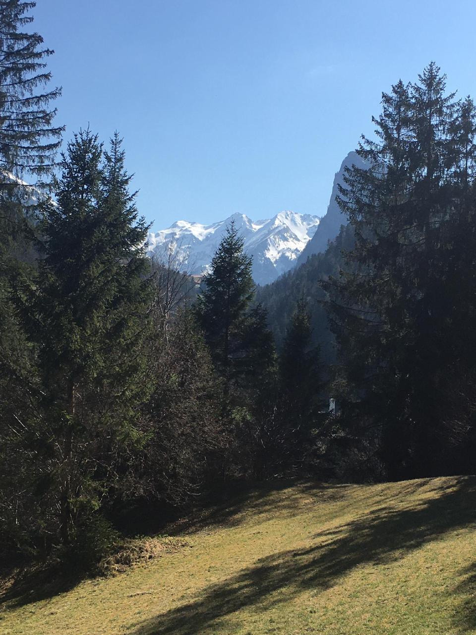 Appartement de vacances Chalet Park - Ferienwohnung privater Sauna und Hamam (934031), Diemtigen, Diemtigtal, Oberland bernois, Suisse, image 12