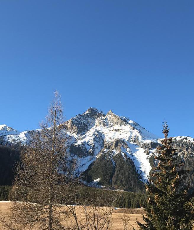 Ferienwohnung Schöne Ferienwohnung in Traumlage (953833), Tschierv, Val Müstair, Graubünden, Schweiz, Bild 11