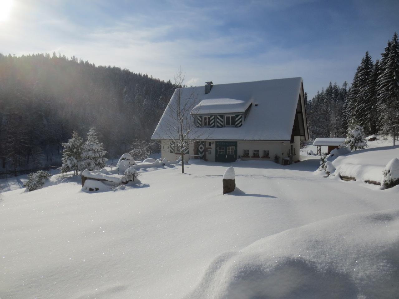 Ferienhaus Tauchert (979550), Baiersbronn, Schwarzwald, Baden-Württemberg, Deutschland, Bild 39