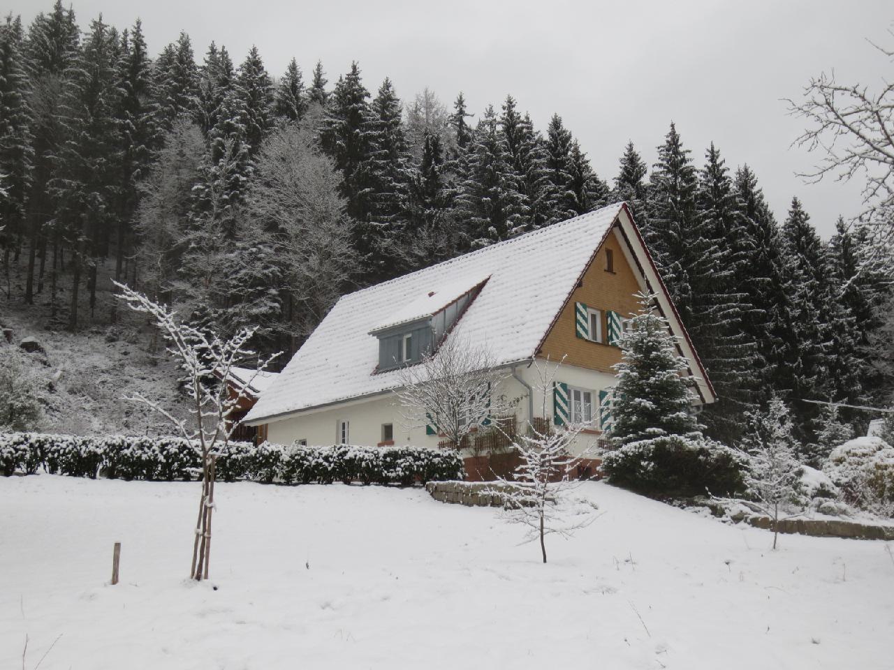 Ferienhaus Tauchert (979550), Baiersbronn, Schwarzwald, Baden-Württemberg, Deutschland, Bild 37