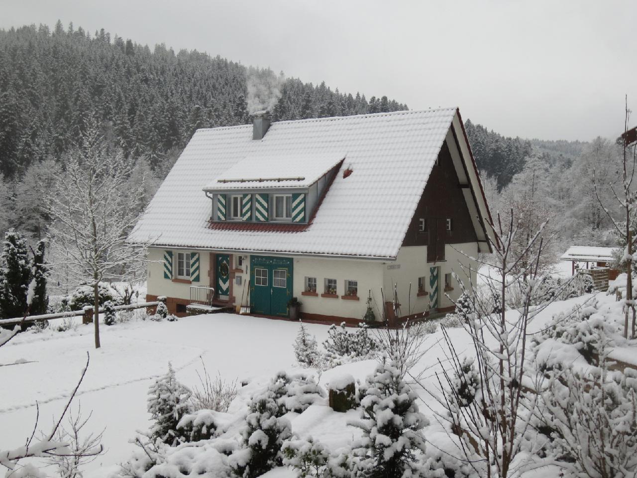 Ferienhaus Tauchert (979550), Baiersbronn, Schwarzwald, Baden-Württemberg, Deutschland, Bild 36