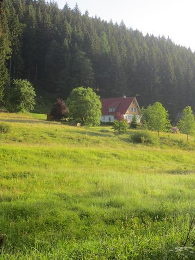 Ferienhaus Tauchert (979550), Baiersbronn, Schwarzwald, Baden-Württemberg, Deutschland, Bild 33