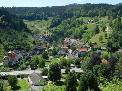 Ferienhaus Tauchert (979550), Baiersbronn, Schwarzwald, Baden-Württemberg, Deutschland, Bild 35