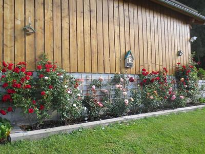 Ferienhaus Tauchert (979550), Baiersbronn, Schwarzwald, Baden-Württemberg, Deutschland, Bild 18