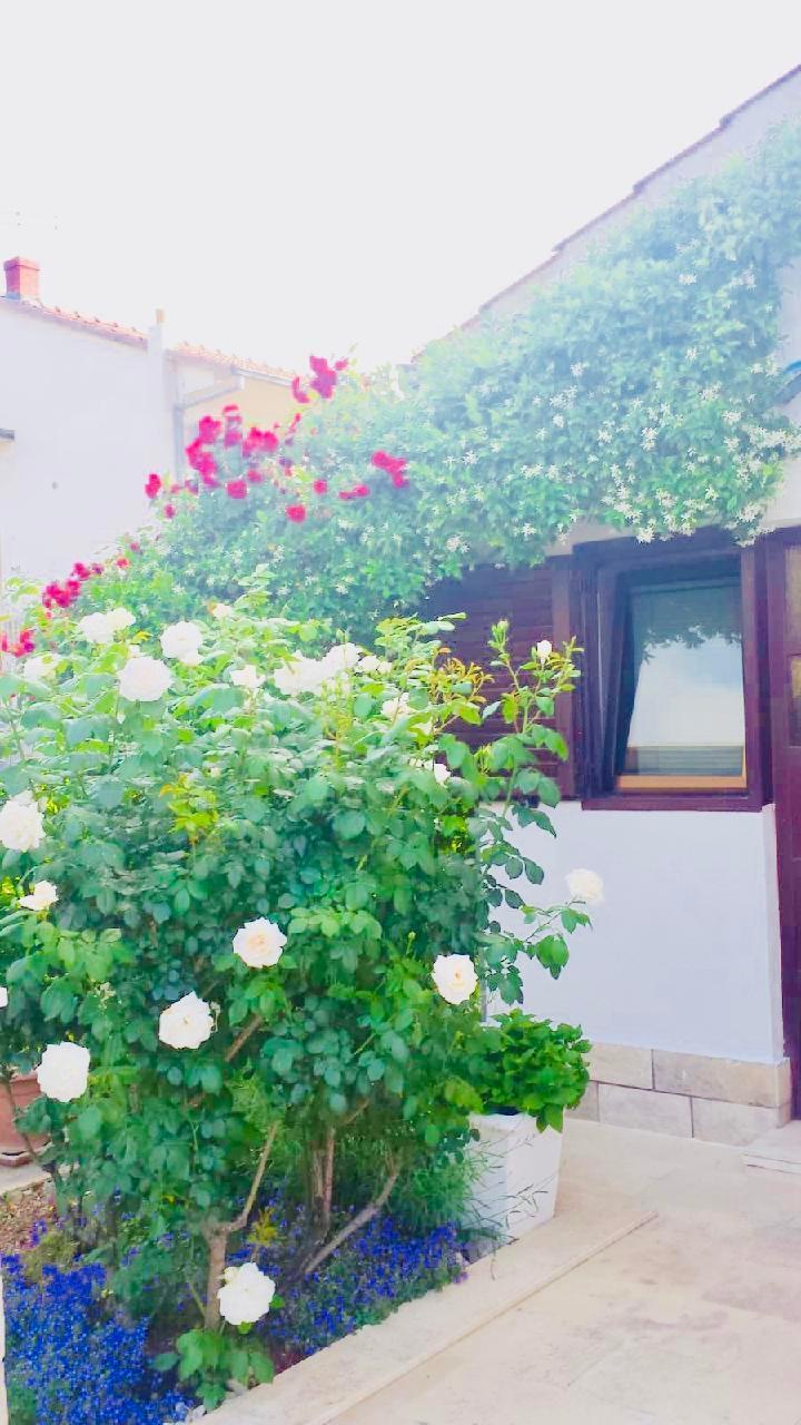 Ferienwohnung Apartmenthaus Ruza 6 - Apartment (98382), Kaštel Štafilić, , Dalmatien, Kroatien, Bild 71