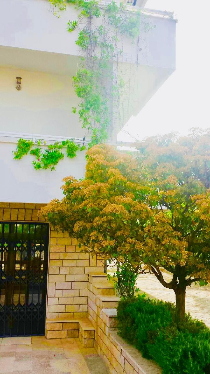 Ferienwohnung Apartmenthaus Ruza 4 - Studio (98392), Kaštel Štafilić, , Dalmatien, Kroatien, Bild 32
