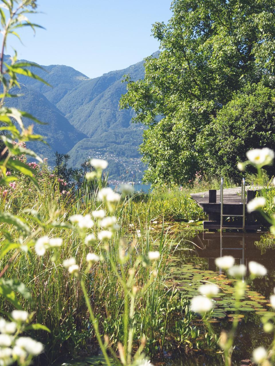 Holiday house Casa Nespole, Familiennest mit Seesicht (983422), Minusio, Lake Maggiore (CH), Ticino, Switzerland, picture 10