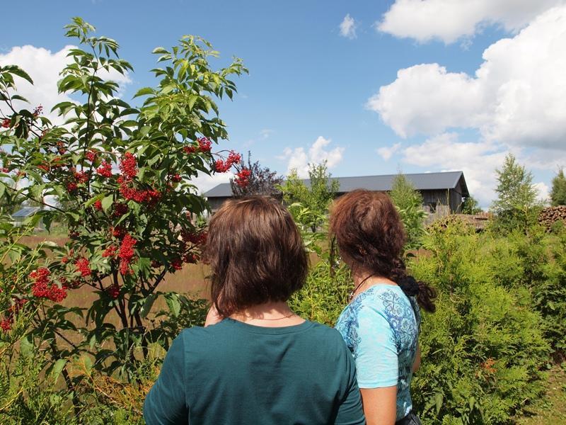 Ferienwohnung Haus Hilde Wohnung 2 (993407), Presseck, Frankenwald, Bayern, Deutschland, Bild 27