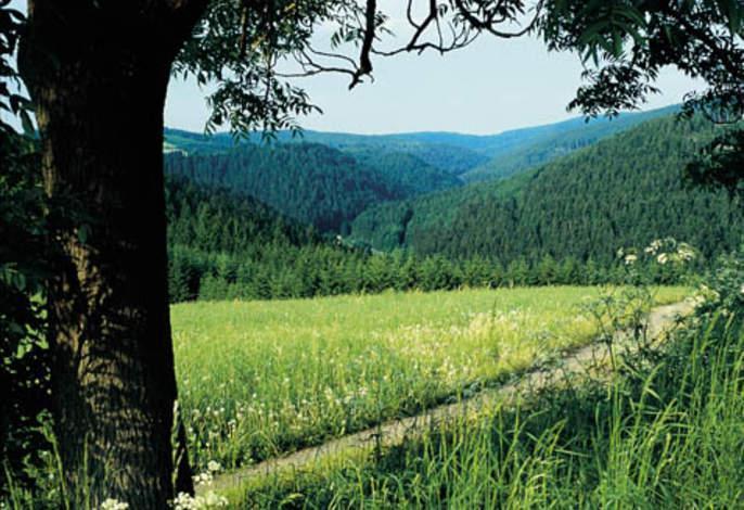 Ferienwohnung Haus Hilde Wohnung 2 (993407), Presseck, Frankenwald, Bayern, Deutschland, Bild 31