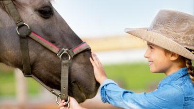 Reiterferien – Urlaub auf dem Reiterhof in einer Ferienwohnung