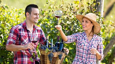 Urlaub auf Weingut - Italien, Frankreich oder Deutschland