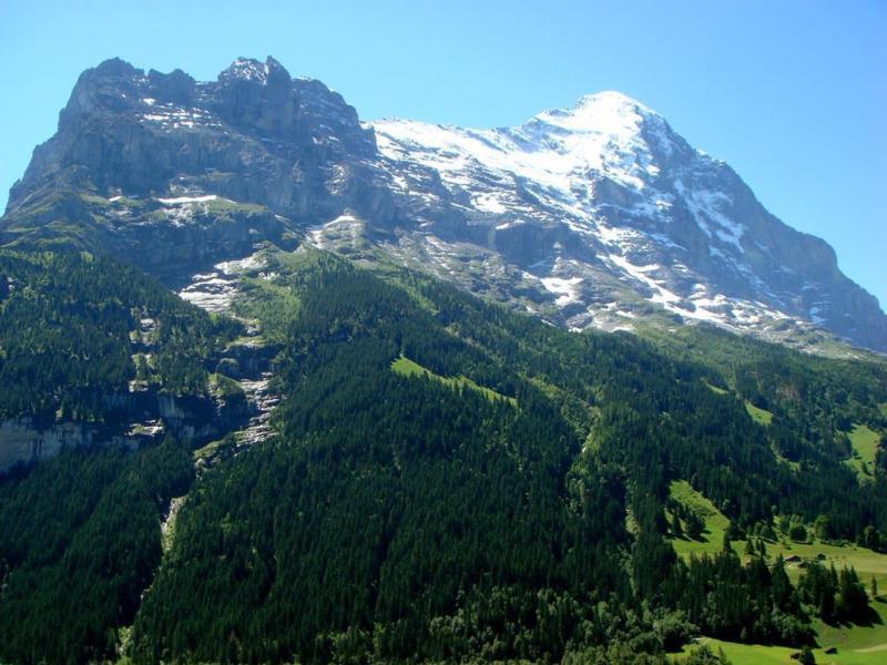 Appartement de vacances Chessibach 2 Bett Wohnung (2691718), Grindelwald, Région de la Jungfrau, Oberland bernois, Suisse, image 9