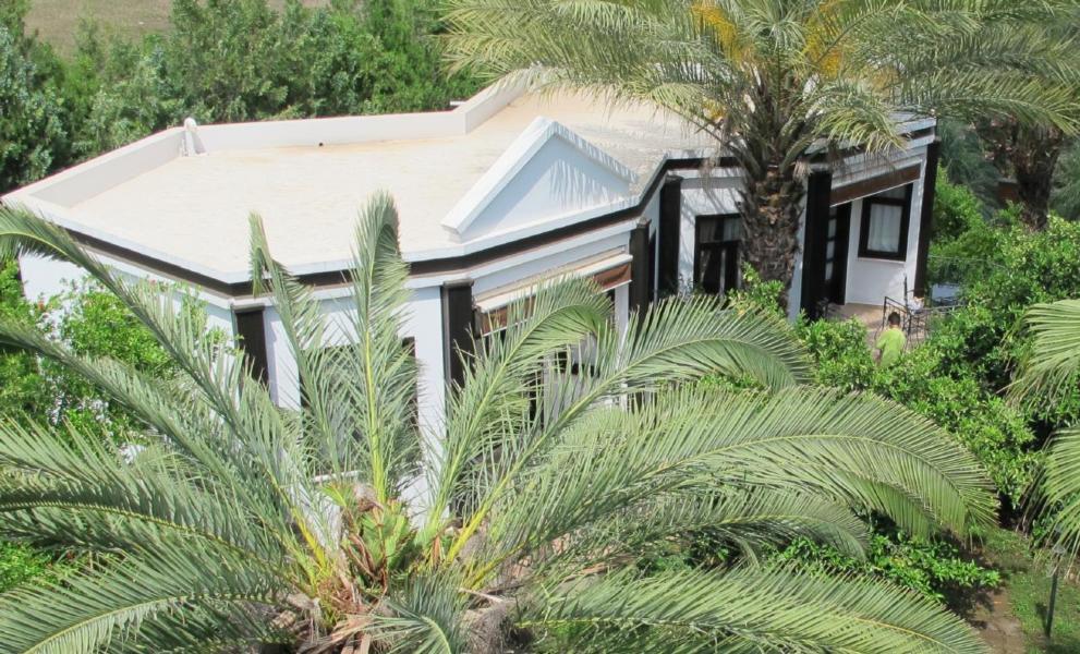 Ferienhaus Ferienbungalow Alibaba (2714488), Kemer, , Mittelmeerregion, Türkei, Bild 1