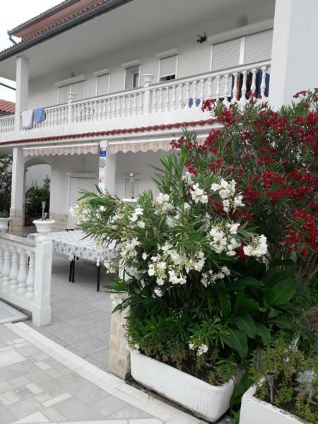 Appartement de vacances TINA bis 8 Personen. (317411), Rab (Stadt), Île de Rab, Kvarner, Croatie, image 41