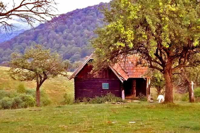 COZO FANTU Berghütte in den Hochwiesen der Karpaten Transsilvaniens